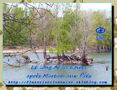 Le long de la Loire après Mareau
