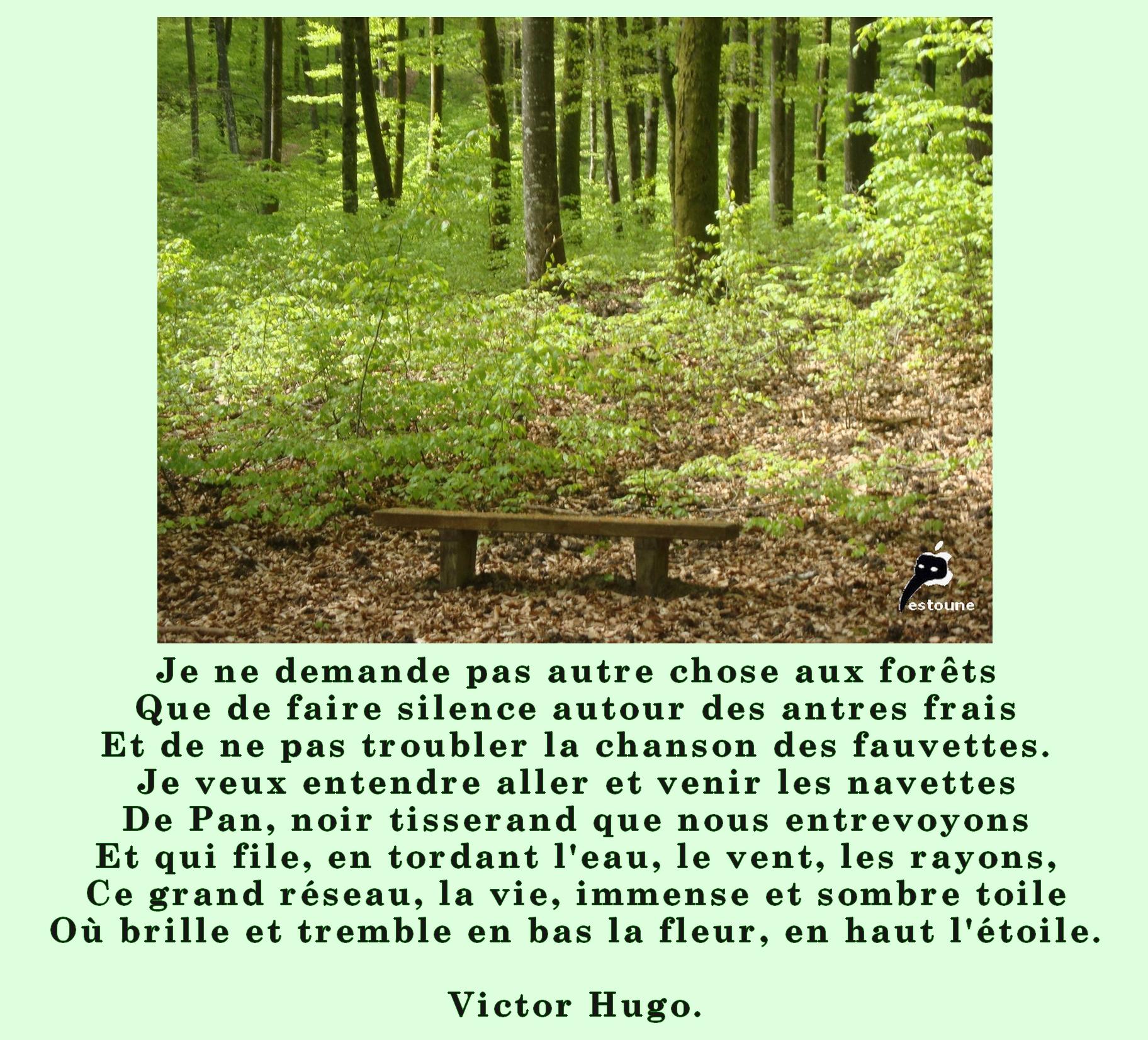 Favori citation en image Je ne demande pas autre chose aux forêts Victor  QL53