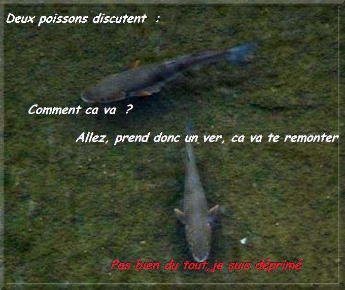 Le poisson d'Avril , d'où vient son origine?