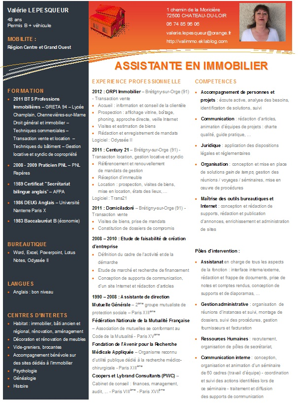 cv agent immobilier exemple