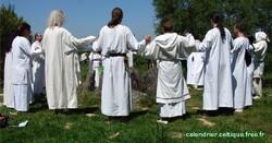 Groupe de druides?