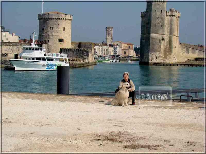 POITOU-CHARENTES La Rochelle le Vieux Port vu du Gabut
