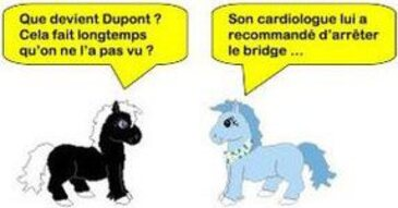 Humour bridgesque