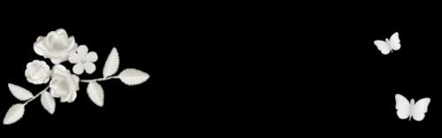 3d blanc