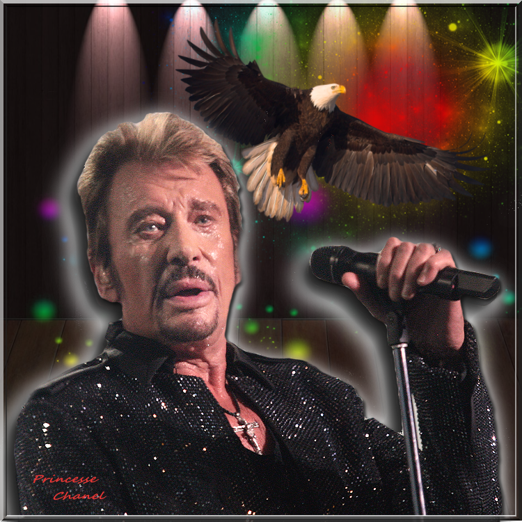 Hommage a Johnny Halliday ( defi)