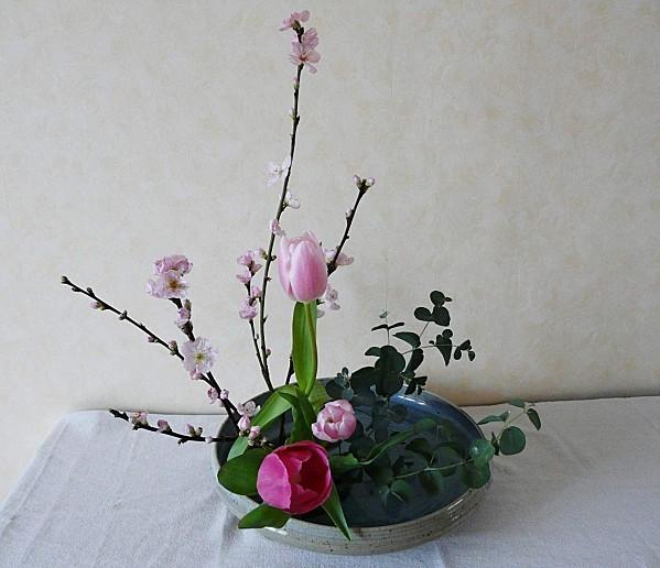 3-sortes-de-vegetaux--20-02-2011-025.jpg