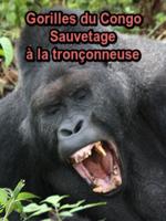 """Gorilles du Congo Sauvetage à la tronçonneuse : Les gigantesques forêts tropicales humides du nord du Congo abritent les 2 tiers des gorilles d?Afrique centrale. Ils ne vivent pas dans des parcs nationaux, mais dans des espaces sylvicoles appartenant à une filiale du groupe forestier germano-suisse """"Danzer"""". Face aux critiques émises à l?encontre du secteur forestier, le groupe Danzer a donné une orientation durable à la sylviculture du Bassin du Congo, où vivent de nombreux gorilles. Tous les problèmes ne sont cependant pas réglés ... ----- ...  Chaine TV : ARTE Date de diffusion : 19/03/2017 Réalisé par : Thomas Weidenbach Nationalité : Allemand Durée : 52min 15s Langue : Français"""