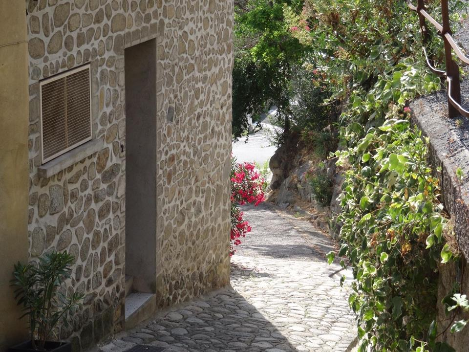 Village de Castelnou (I)