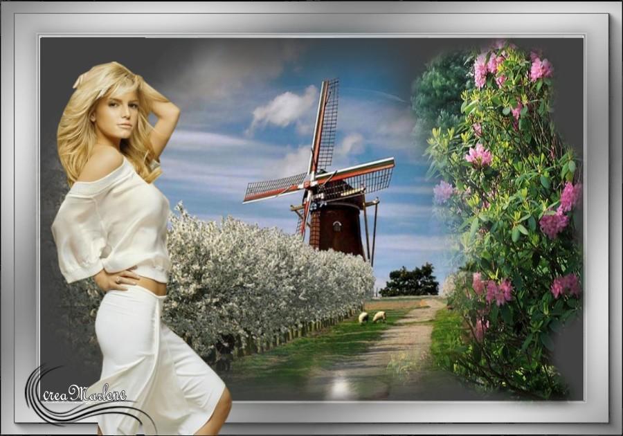 ♥Le moulin ♥