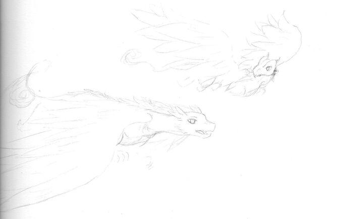 Nhyr et Phyl sautèrent dans les airs, les ailes déployées et les griffes en avant