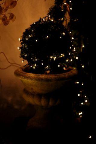 Buon Natale di Firenze (7)