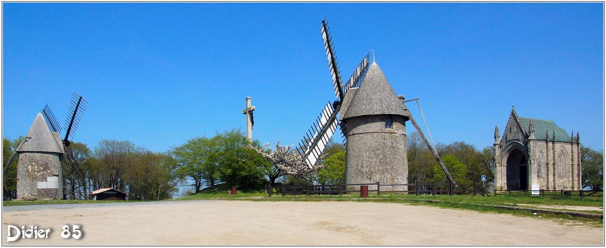 (85) Vendée - Les Herbiers (5) - Mont des Alouettes