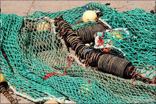 Photos de chaluts de pêche (La Cotinière - Oléron)