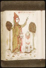 Arnaud de Villeneuve, le maitre inconnu