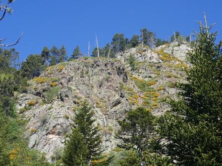 Les rochers de Rocadells, couverts de genets