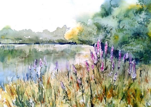 L'image contient peut-être: plante, fleur, ciel, arbre, plein air, nature et eau