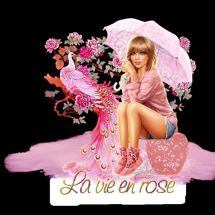 La vie en rose sans flash