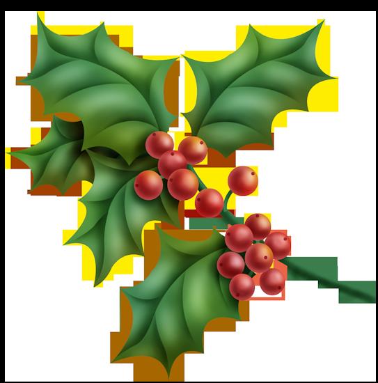 P.U CHRISTMAS FUNKY