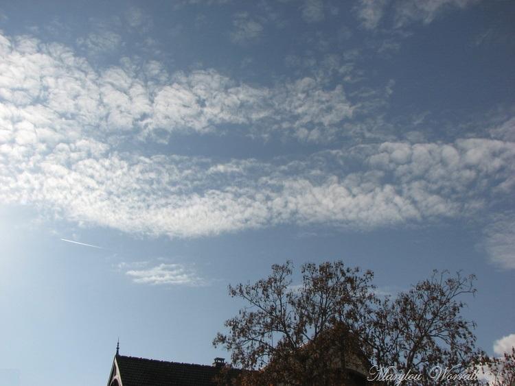 Ciel d'Alsace 486