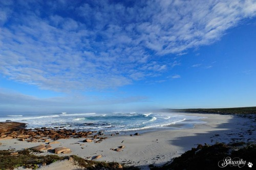 Atlantic Coast, Namaqua NP