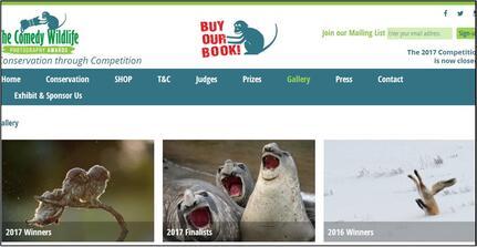 Le Comedy Wildlife : photos animalières amusantes