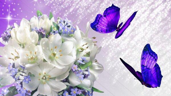 Le lilas !