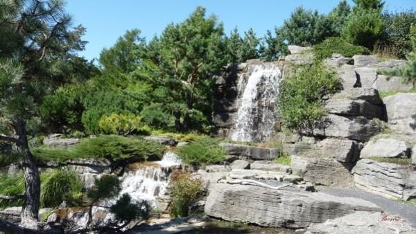 Jardin botanique (69)
