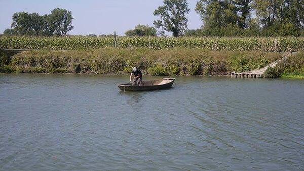 Un passager sur le bateau à chaine