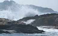 Randonnée ensoleillée sur la presqu'île de Giens