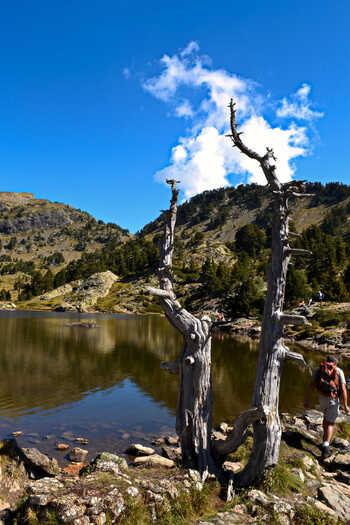 2014.09.06 Lac Achard (Rhône-Alpes, Isère)