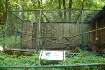Zoo Neunkirchen 2012 017