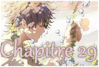 Chapitre 29