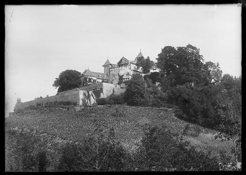 Le château de Grammont