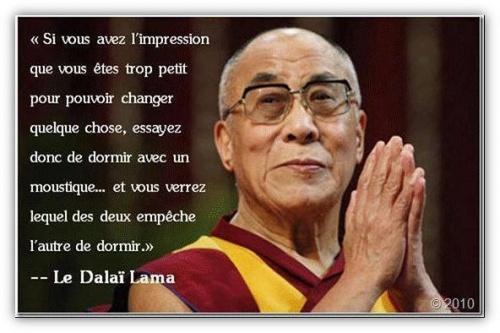 Sagesse du Dalaï Lama