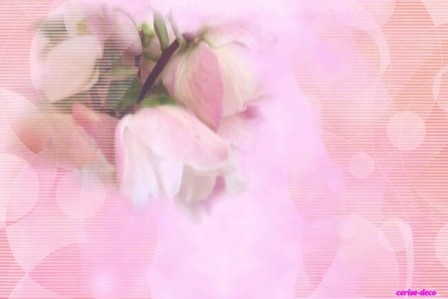 design hellébore : fleurs d'hiver