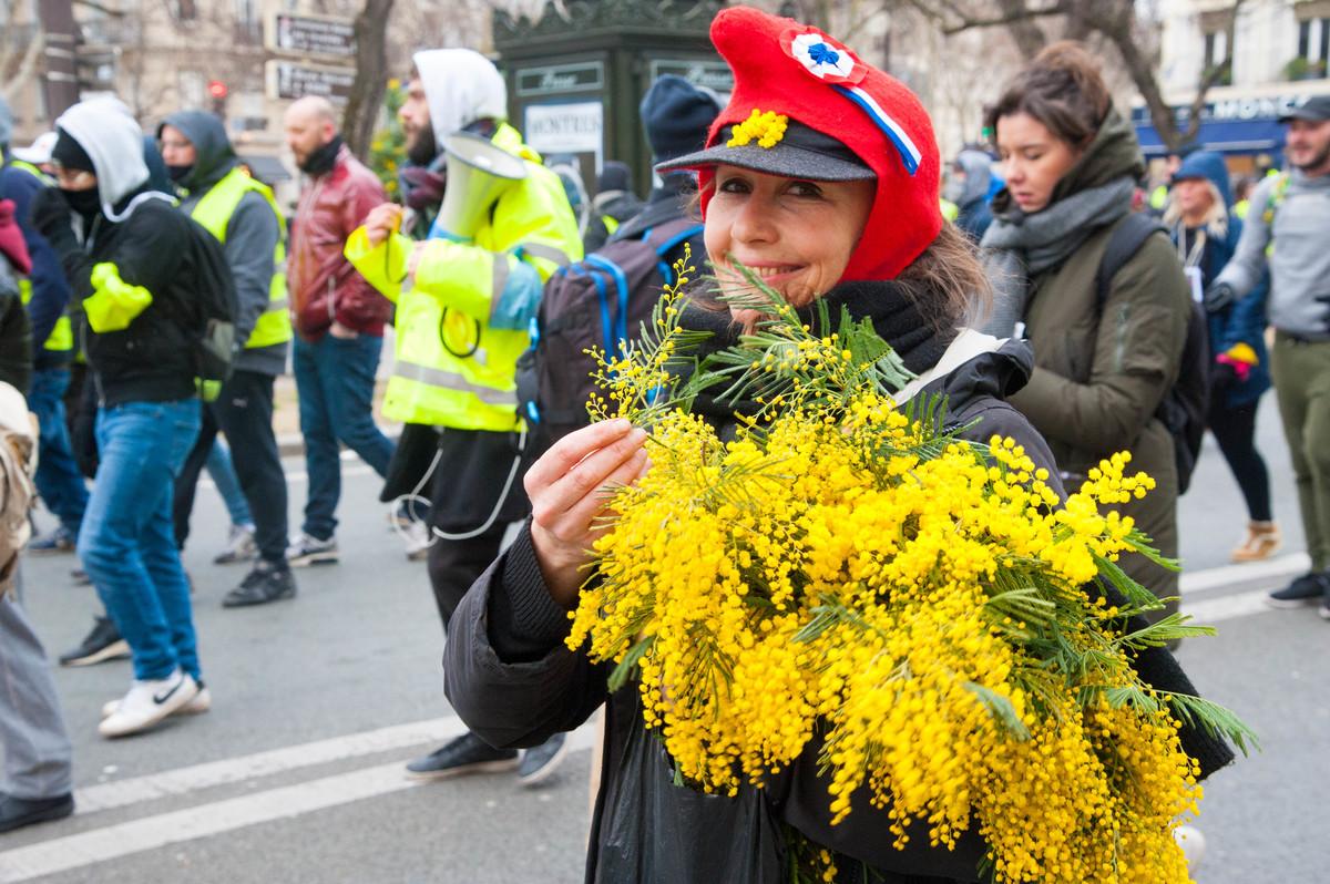 Distribution de mimosa sur fond de peace and love et de liberté, égalité, fraternité... - © Reflets