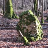 Menhir Yonne