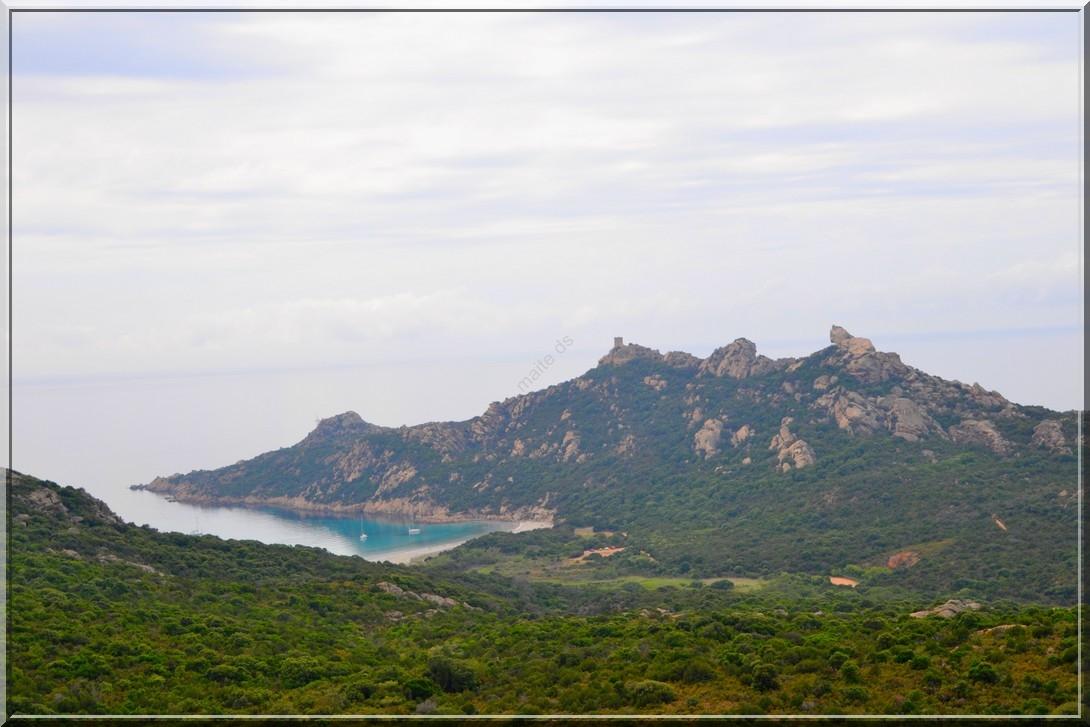 Lion de Rocapina - Corse
