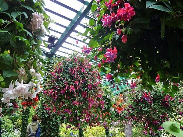 Jour 24 Butchart Gardens suspensions