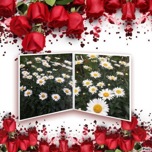 Effet pixiz Florales