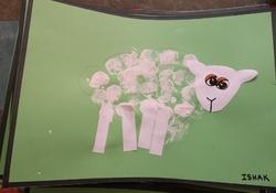 Les moutons pour la grande lessive