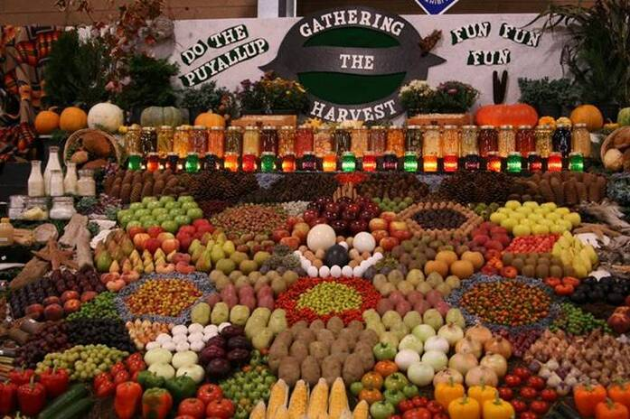 PRESENTATION LEGUMES FRUITS DANS SUPER MARCHE