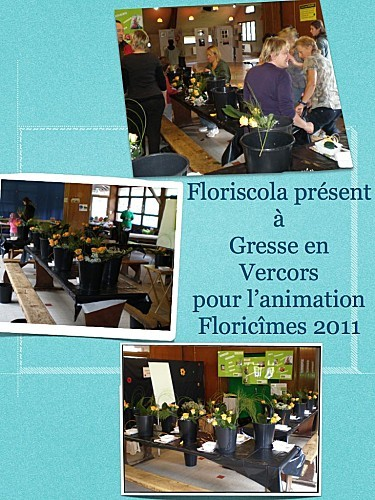 gresseenvercors2011 001