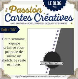 Passion Cartes Créatives#551 !