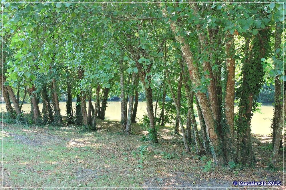 Les étangs de Monsalut - Début Août 2015 - 3/7