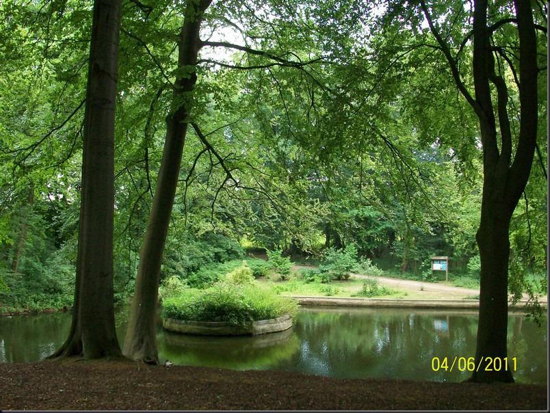 le parc arboretum de jumet032