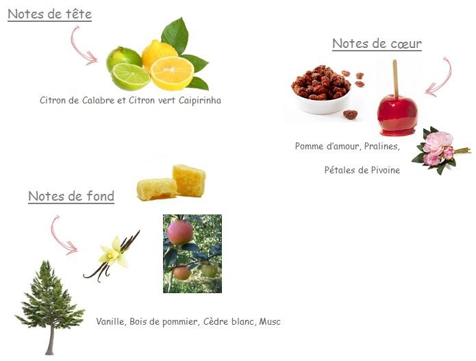 Parfum Nina - La petite pomme a poussé sur mon sapin!