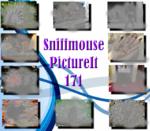 PictureIt 171 - Sniffmouse