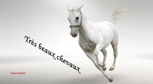 « Pour ceux qui aiment les chevaux1.ppsx »