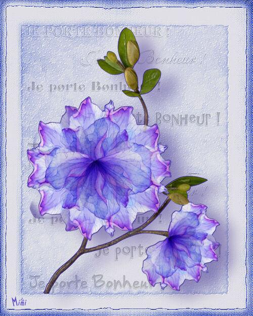 Bleu bonheur ! pour vous